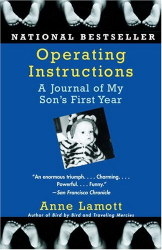 Anne Lamott: Operating Instructions: A Journal of My Son's First Year