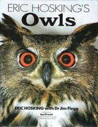 Eric Hosking: Owls