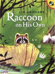 : Raccoon On His Own