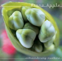 Fiona Apple -
