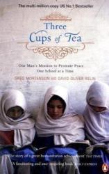 Greg Mortenson: Three Cups of Tea
