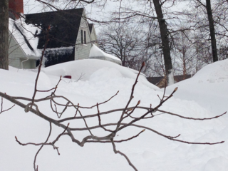 Car in Snow
