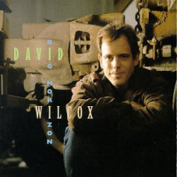 David Wilcox - Missing You