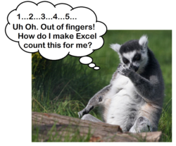 Counting_lemur