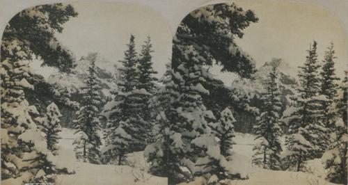 Mt_Rundle,_Banff_(HS85-10-19333)