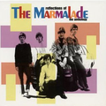The Marmalade - Twenty Miles