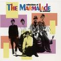 The Marmalade - Twenty Miles