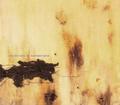 09-Nine Inch Nails-Mr. Self Destruct