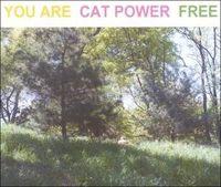 14-Cat Power evolution