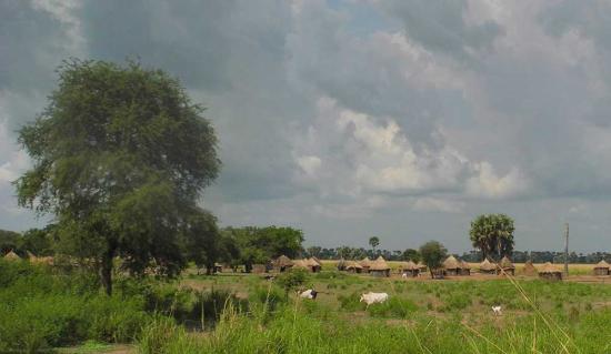 Village-in-karuturi-lease-area