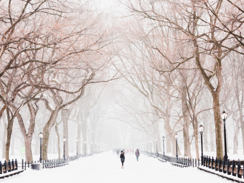 Winter Attractions in NYC
