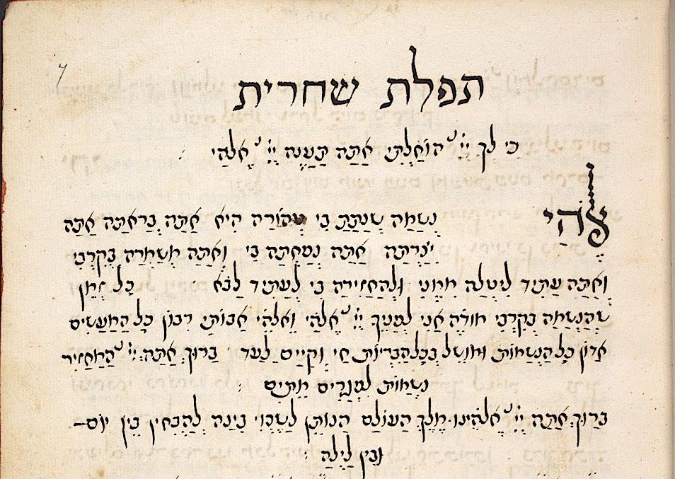 A Digital Revolution - hundreds of Hebrew manuscripts go on