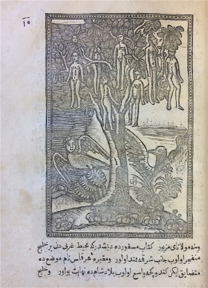 On the left (BL Or.80.b.7), flora and fauna of Hispaniola, including the mermen and their splendid pearls, brought back to Europe by a man named Castellón, as well as the tree with fruit like women (BL Or.80.b.11)