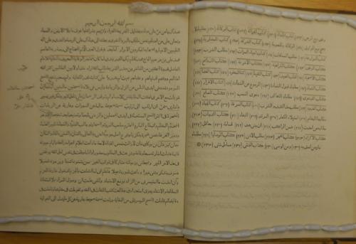 Pages from 'Kitab mukhtaṣar al-wiḳāyā fī masā'il al-hidāyā' with manuscript notes