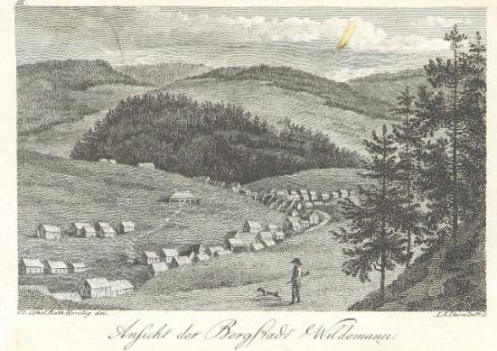 Harz Wildemann 10260.e.14