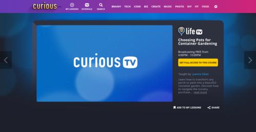 CuriousTV