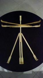 Tropical Itch meets Leonardo Da Vinci's Vitruvian Man