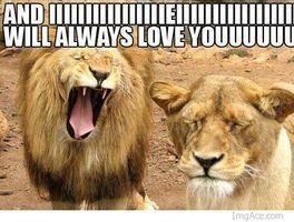 When+i+try+singing+to+a+girl+drunk+_836d4c4f9b8386bbf61646632b0bd92f
