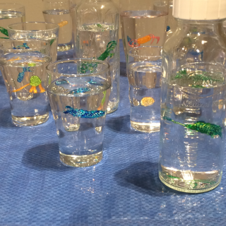 Beaded creatures in Water Vessels