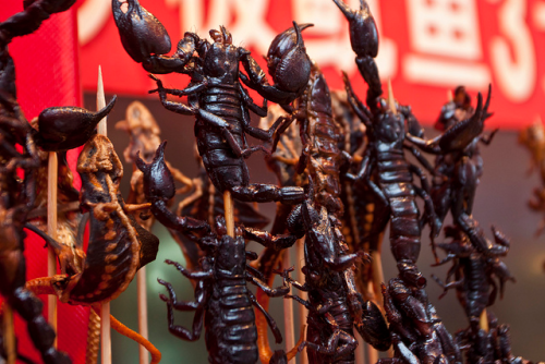 Scorpions on a stick in Beijing